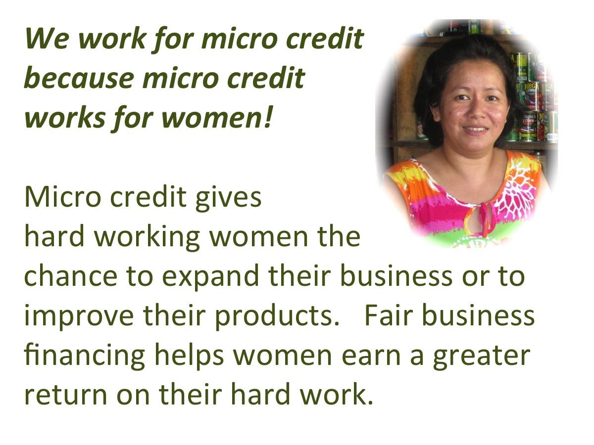 Why Support Micro Credit for Women?